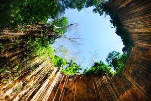 Vista inferior del Cenote Ik Kill