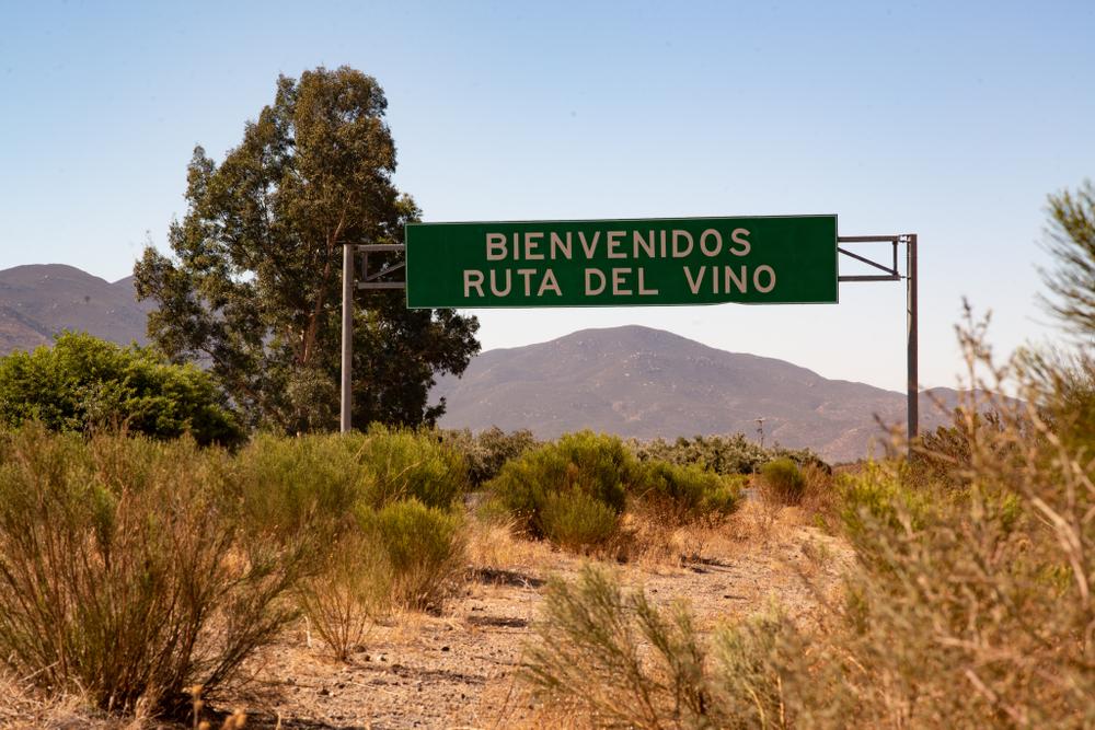La ruta del vino en Valle de Guadalupe