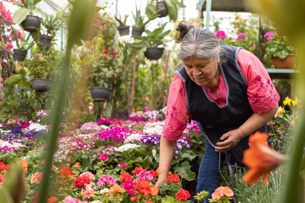 Mercado de flores en Xochimilco