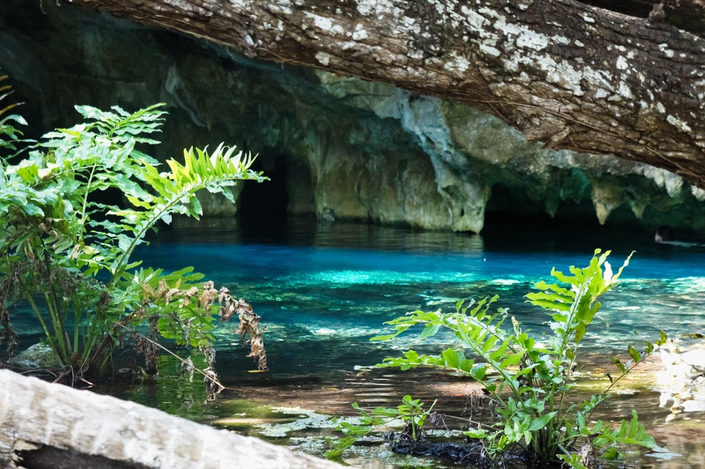 Vistas del Gran Cenote